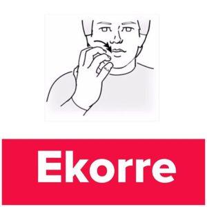 Tecknet för ekorre