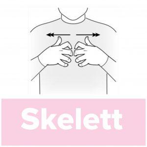 Tecknet för skelett
